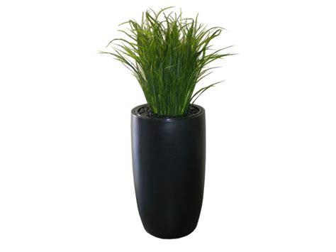 Fiberglass Planters Canada by Lisbon Fiberglass Planter Plantersetc