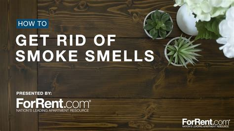 how to get throw up smell out of couch how to get rid of smoke smells youtube