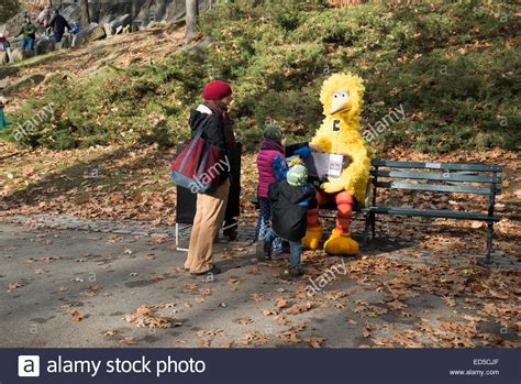 buy a bench in central park children find big bird sitting on a bench in central park new york stock photo