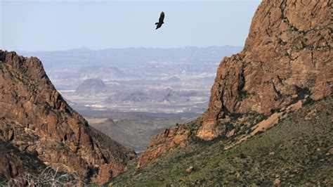 rugged relief the stunning of big bend national park stretches across two countries could it survive a