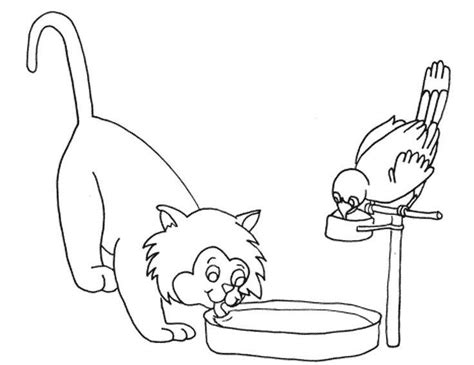 coloring pages of water birds i have download cute cat and bird were drinking water