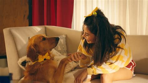marshmello dog video marshmello ft bastille happier official music video