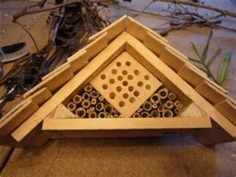 bug house plans 25 free bug box plans at planspin com