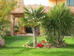 decoraci 243 n de jardines con palmeras