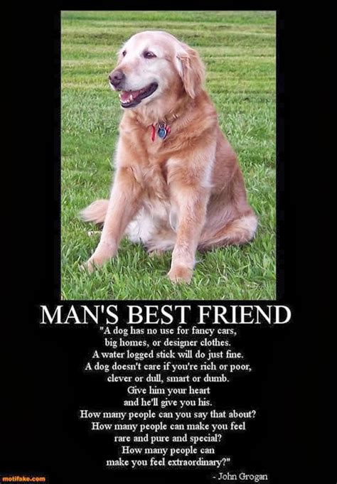 quotes about dogs dying sad grief quote