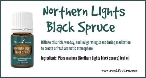 northern lights black spruce essential oil northern lights black spruce essential oil real food rn