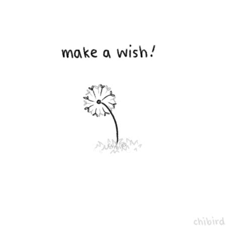 A Wish In Time dandelion wish quotes