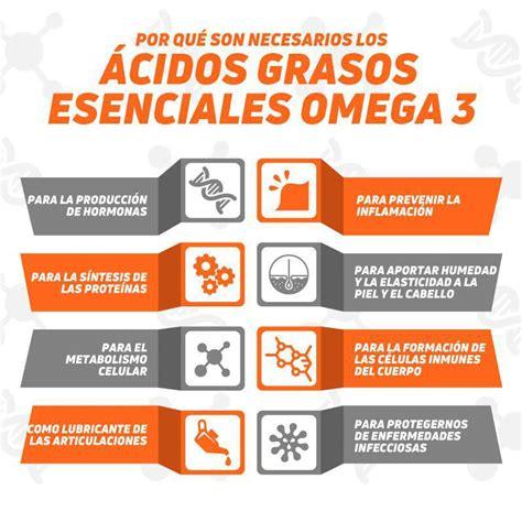 omega 3 alimentos omega 3 beneficios alimentos y por qu 233 deber 237 as consumirlos