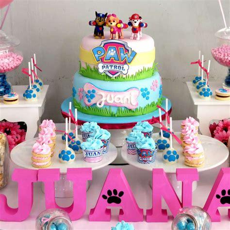 decorar fotos talisman paw patrol birthday party ideas photo 4 of 10 catch my