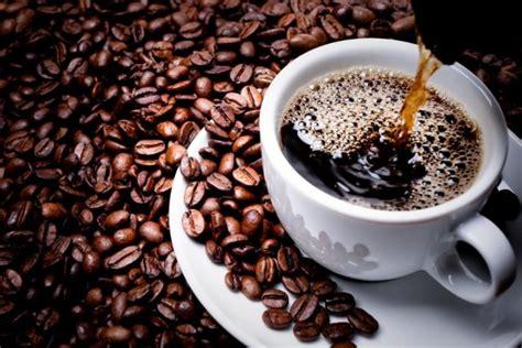 Cinta Kopi 1000 kata kata kopi bijak romantis cinta lucu lengkap