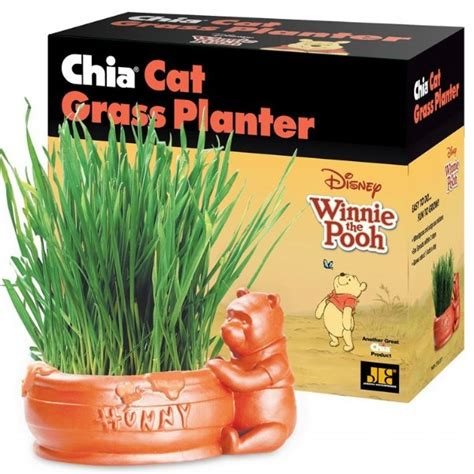 Chia Cat Grass Planter Winnie The Pooh As Seen On Tv Gifts Chia Cat Grass Planter