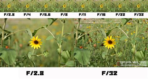 shutter speed mateography aperture priority definition