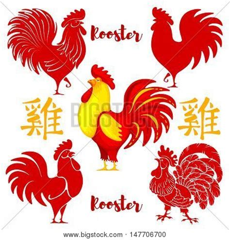 lainey new year rooster rooster images illustrations vectors rooster stock