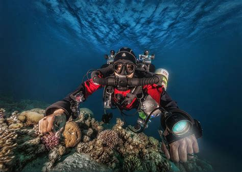dive dahab diving in dahab with scuba seekers scuba seekers dahab