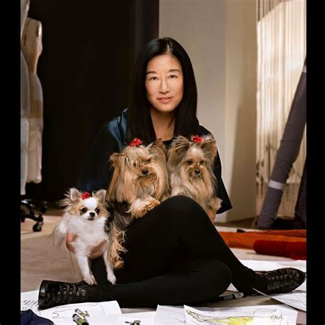 how much are yorkies worth vera wang pets pet worth