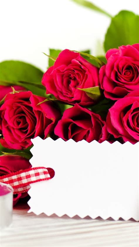 wallpaper valentines day february  flowers roses