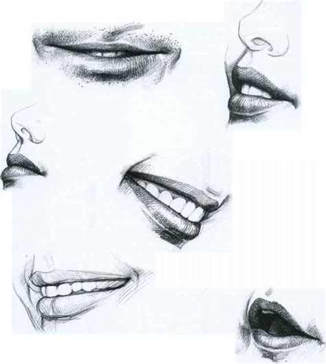 Drawing Mouths by The Drawing Faces And Figures Joshua Nava Arts