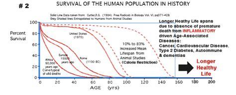 span in human years human span