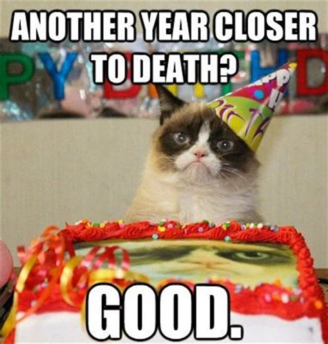 Cat Birthday Memes - www 50 best com images happy birthday memes extremely