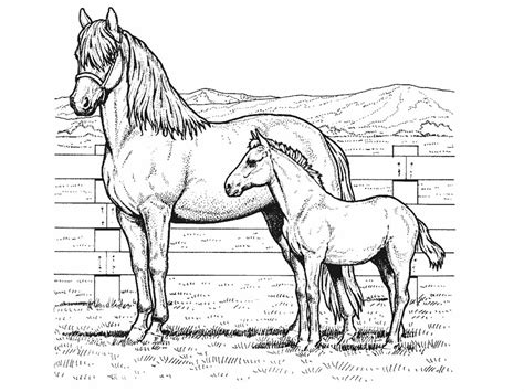 Coloring Pages With Horses | horse coloring pages for kids coloring pages for kids