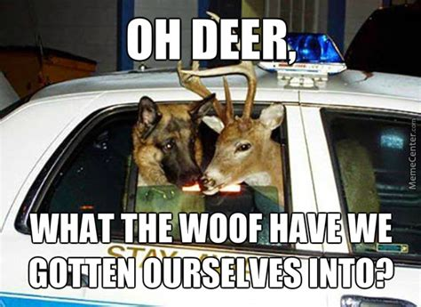 Oh Deer Meme - oh deer i think that s dr sheperd from grey s anatomy