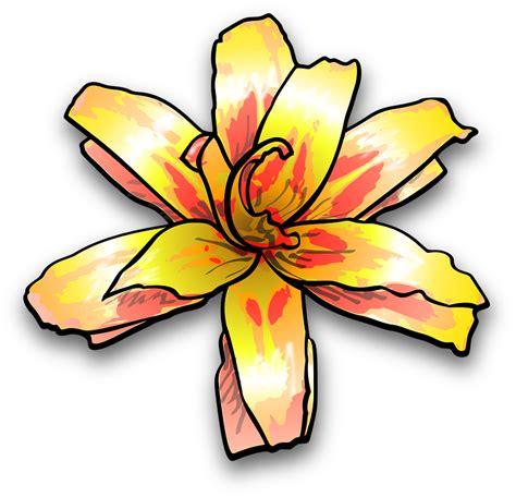 bunga lily warna kuning