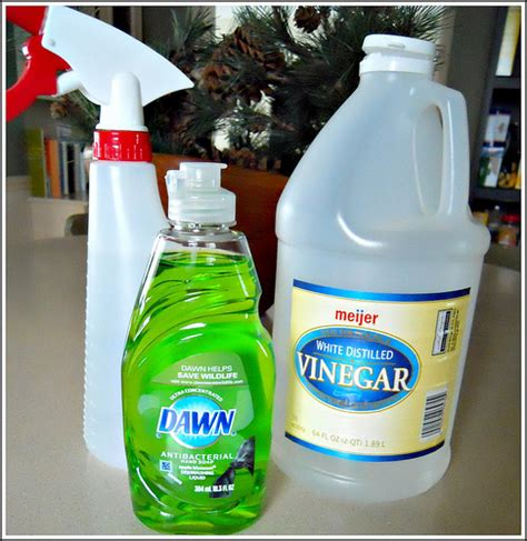 Vinegar Shower Cleaner by Shower Cleaner Andrea Dekker
