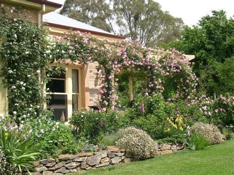 best side of house for garden climbing roses