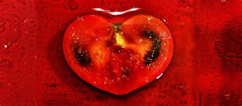 alimentazione e nutrizione nutrizione centro olos
