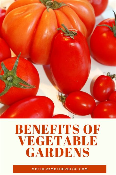 10 Benefits Of Vegetable Gardens Mother2motherblog Benefits Of Vegetable Gardening