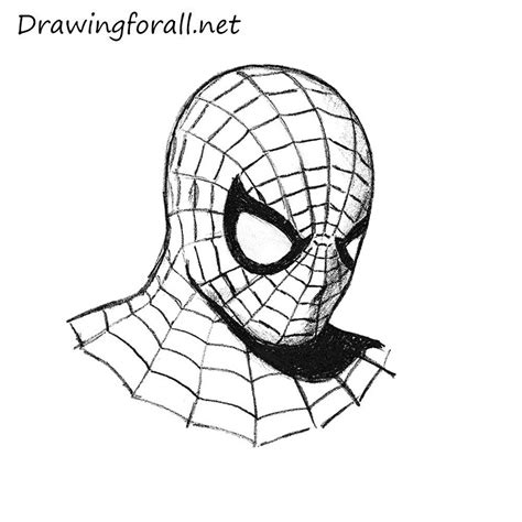 Muzi Black Spider Pe Line drawing www pixshark images