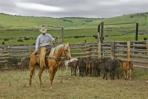 dude ranch 10 properties for sale ranch