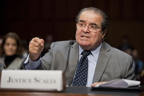 nino and me my friendship with justice antonin scalia books a of historic proportions
