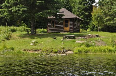 Cabins In Algonquin by Tattler Lake Cabin Picture Of Algonquin Provincial Park
