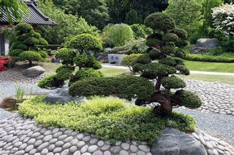 japanische gärten bilder bonsai baum im zen garten gestaltungsideen