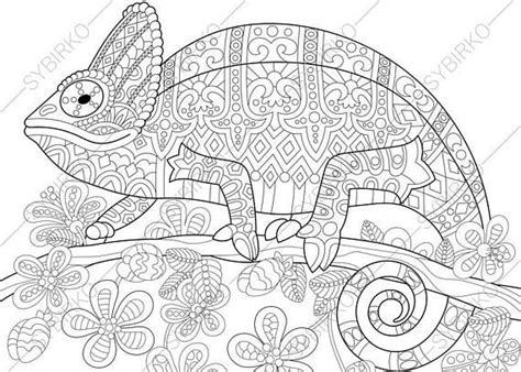 coloring pages for adults chameleon 51 best animals images on pinterest coloring books
