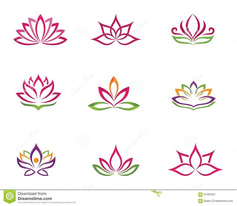 fiore designs stylized lotus flower icon vector background stock vector