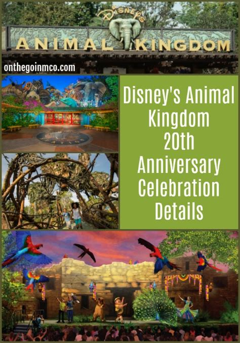 libro kingdom come 20th anniversary on the go in mco a lifestyle and informational blog about all that central florida has to