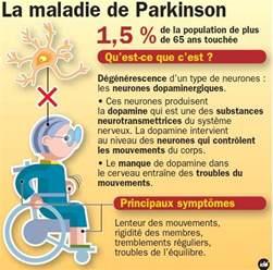 maladie de parkinson les sympt 244 mes le diagnostic et le