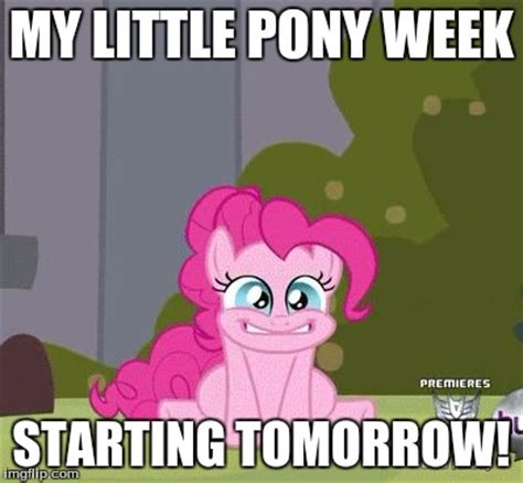 My Little Pony Meme Generator - i m so excited imgflip