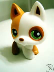 pet shop puppies littlest pet shop pets and popcorn