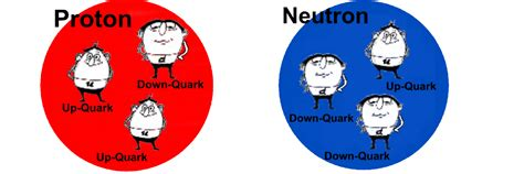 who discovered protons and neutrons the neutron was effectivelydiscovered in 1932 by