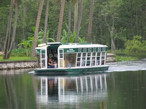 silver springs glass bottom boat 1000 images about fun places of the past on pinterest