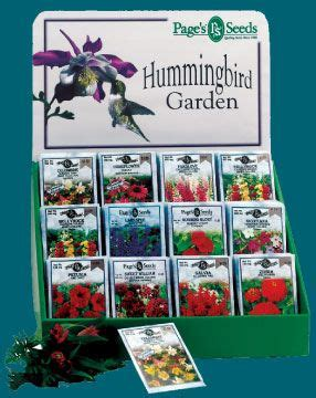 Hummingbird Garden Layout 1000 Images About Hummingbird Stuff On Pinterest Hummingbird Garden Hummingbirds And