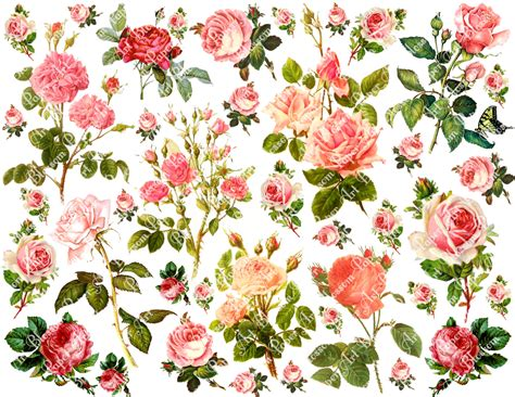Printable Decoupage Paper - 6 best images of vintage flowers decoupage printable