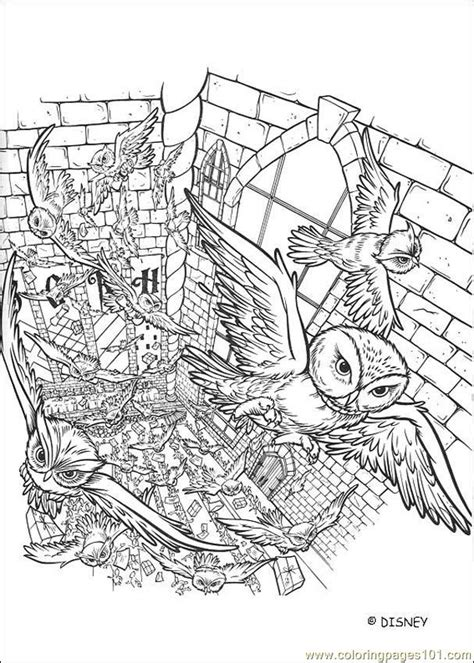 harry potter coloring pages pdf harry potter 5 coloring page free harry potter