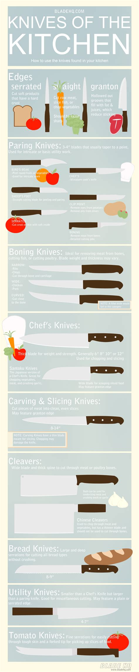 guide to kitchen knives knives of the kitchen infographic infographic list