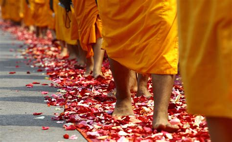 What Has A Monk Got To Do With Breast Enhancement by How To Volunteer With Buddhist Monks Goabroad