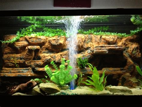 freshwater aquarium aquascape design ideas freshwater fish aquascaping ideas interior design