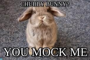 Chubby Meme - chubby bunny lapin chasseur meme on memegen